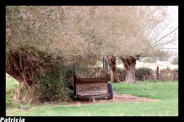 charette dans nature 06910